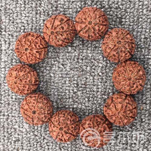 精品8瓣矮桩麒麟大金刚手串直径25